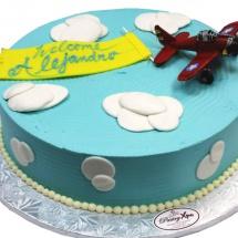 airplane-birthday-cake-pastryxpo